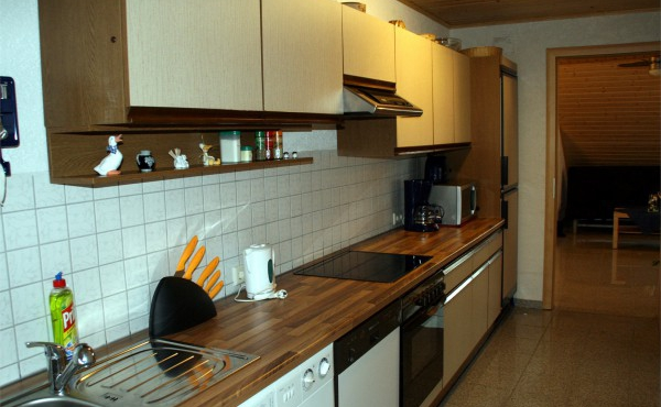 Küchen- und Waschbereich - Ferienwohnung Metz, Weindorf Lachen-Speyerdorf, Neustadt an der Weinstraße (Pfalz)