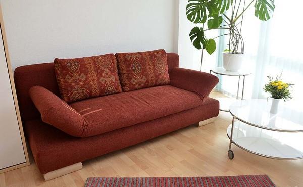 Wohnbereich mit ausklappbarem Schlafsofa, ruhige Lage im Stadtzentrum von Neustadt / Weinstr.