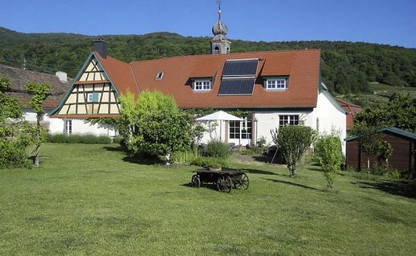 Blick auf Hof Albert und Terrasse vom Garten aus - Ferienwohnung Hof Albert, Weindorf Hambach, Neustadt / Weinstr. (Pfalz)