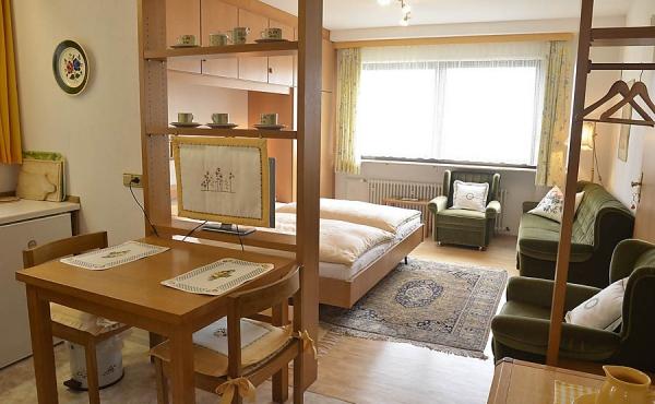 Küche grenzt an Wohn-/Schlafbereich an, komplett ausgestattet - Apartment 2, Haus Panoramablick, Weindorf Haardt, Neustadt / Weinstr. (Pfalz)