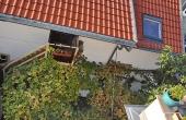 Eingangsbereich - Ferienwohnung / Ferienhaus Latour, Neustadt / Weinstr. (Pfalz)