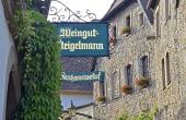 Außenansicht des Ferienhauses mit drei Ferienwohnungen - Ferienwohnung Idig, Weingut Thomas Steigelmann, Gimmeldingen (Pfalz), Neustadt / Weinstr.