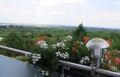 Balkon mit herrlicher Aussicht am Ortsrand - Ferienwohnung Haus Storck, Weindorf Gimmeldingen, Neustadt / Weinstr. (Pfalz)