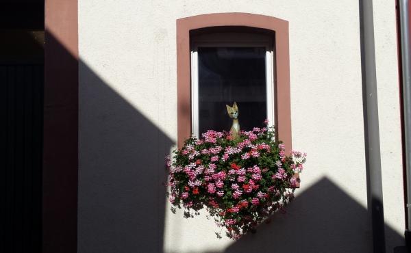 Fewo Faber - Strassenansicht